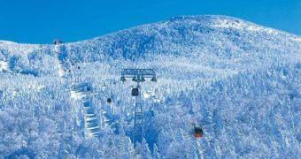 6 địa điểm ngắm tuyết đẹp khó cưỡng tại Nhật Bản