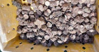3 ngư dân bất ngờ phát hiện ''kho báu'' kim loại dưới đáy biển Quảng Bình